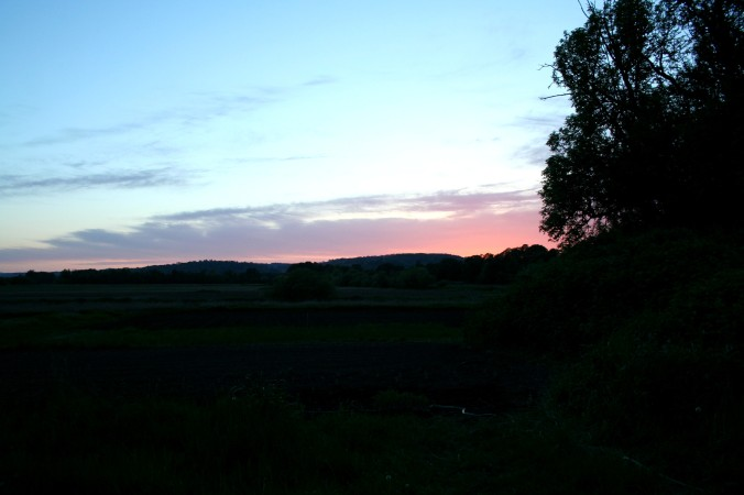 sunset, farm, field, farming