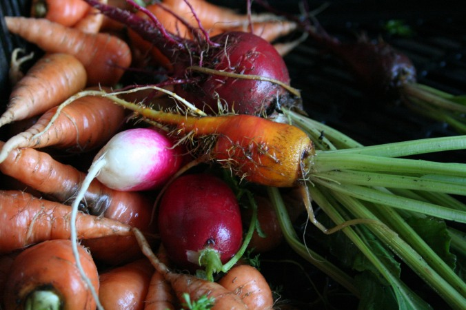 beets, radish, carrot, spring food, local food, seasonal eating
