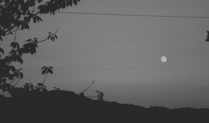 moon, black and white, photography
