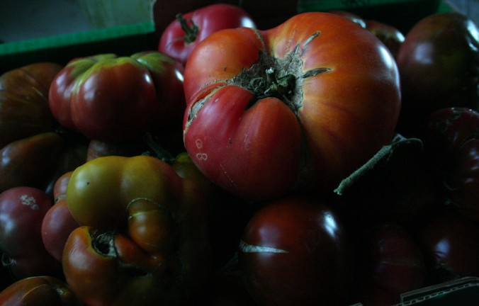 heirloom tomatoes, canning season, sustainable farming, farming, gardening, tomato sauce, summer