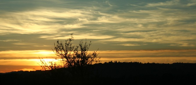 sunset, love