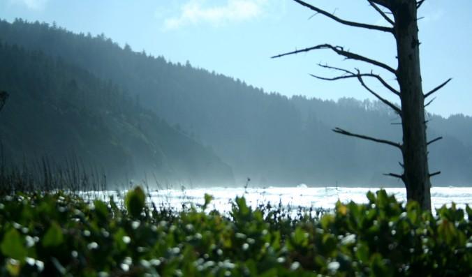 beach, love, mindfulness