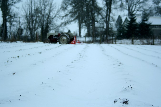 tractor, snow, farm, winter