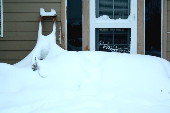 snow, farm, snow day, fun