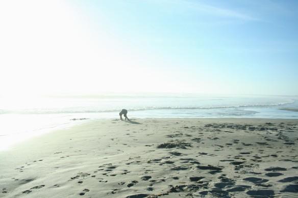 ocean, beach, summer, growth, change